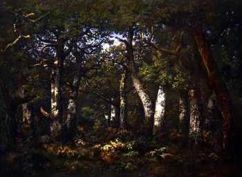 Sous Bois de la Foret de Barbizon, 1867 by Narcisse Virgile Diaz de la Pena (French, 1807 - 1876)