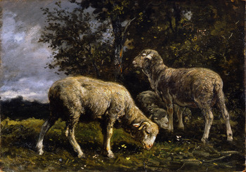 Moutons sous un Arbre (Sheep under the Trees) by Charles Jacque (French, 1813 - 1894)