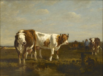 Cattle at the Watering Hole by Constant Troyon (French, 1810 - 1865)